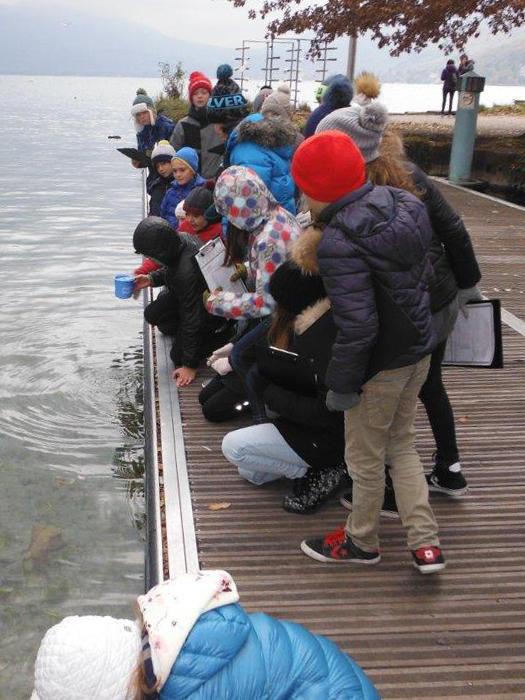 Classe du Colovry - relevés au lac d'Annecy