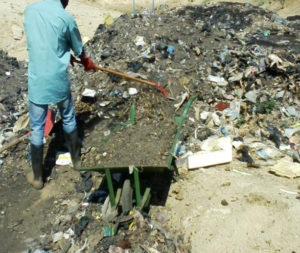 Fermentescibles issues des ordures ménagères pour le compostage